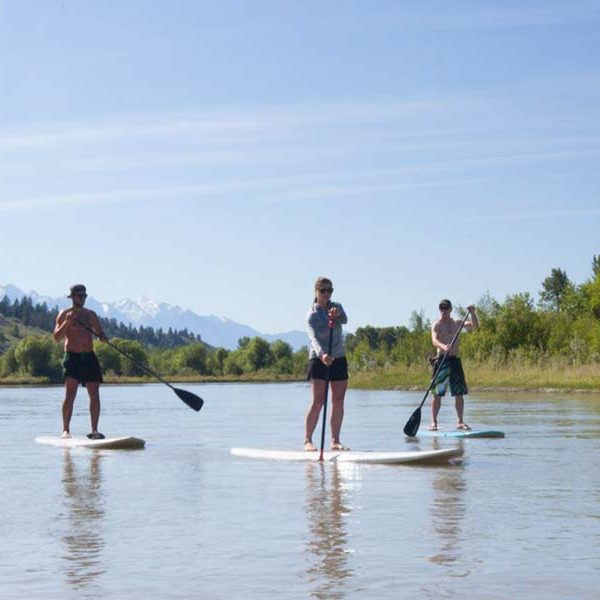 Standup paddle board on the river